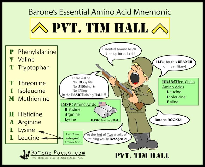 Amino acids classification in a jiffy
