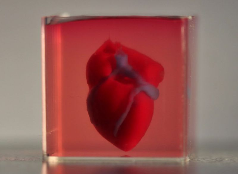 First 3D Printed Vascularized Heart - MEDizzy Journal