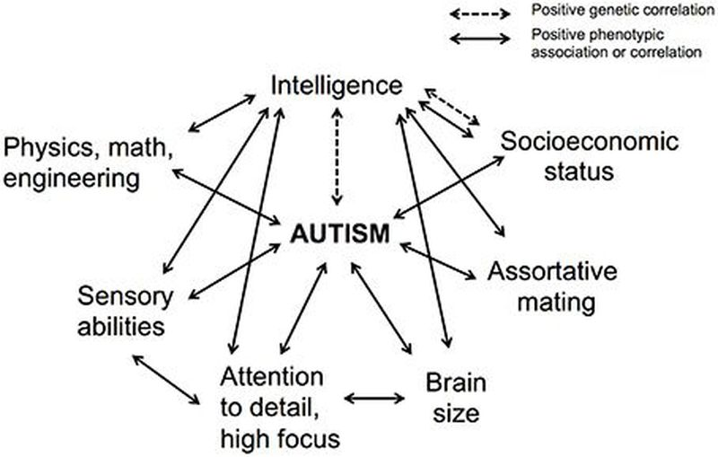 Autism and Intelligence