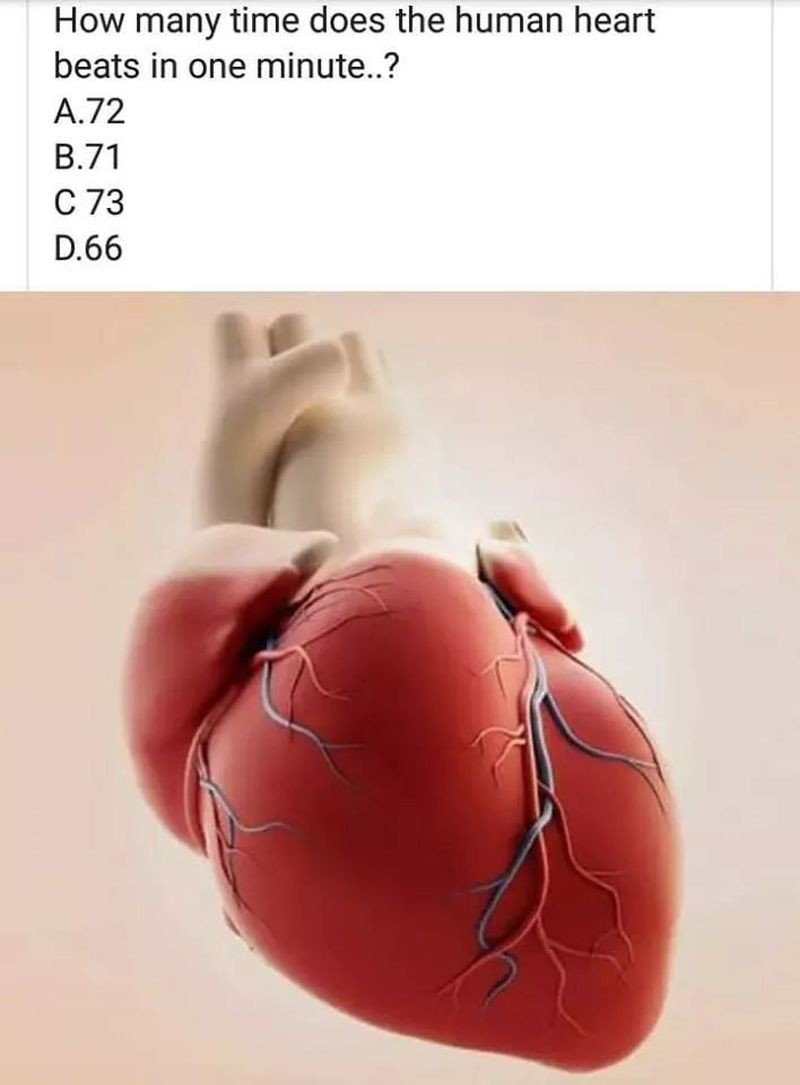 Human Heart Rate❤