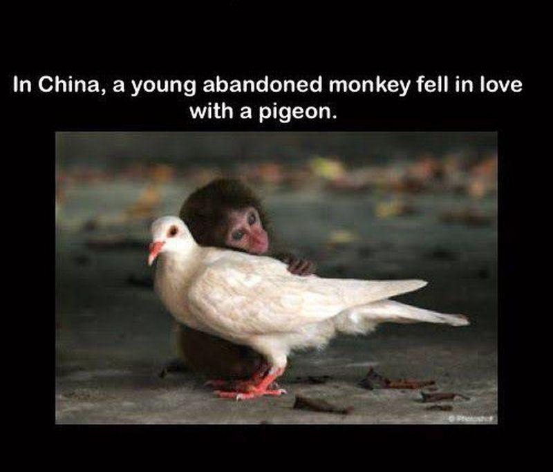 Love is blind 😂😂😂😂