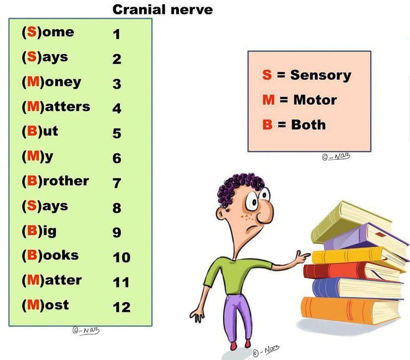 Memonics of cranial nerves