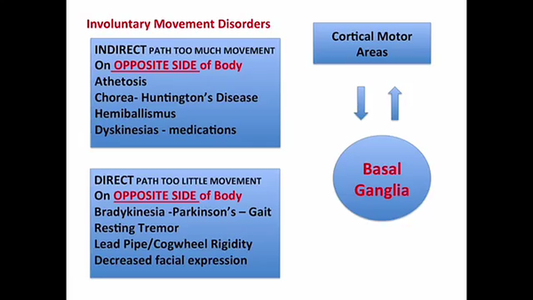 direct path huntingtons disease - 600×338