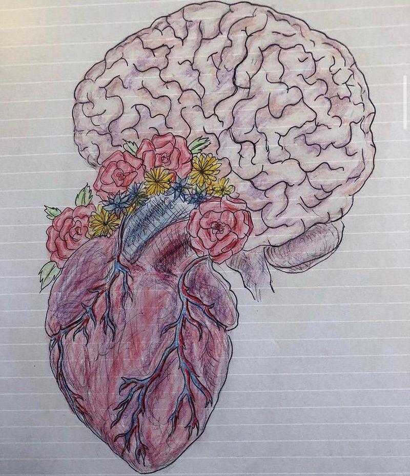 Anatomical drawing 🧠