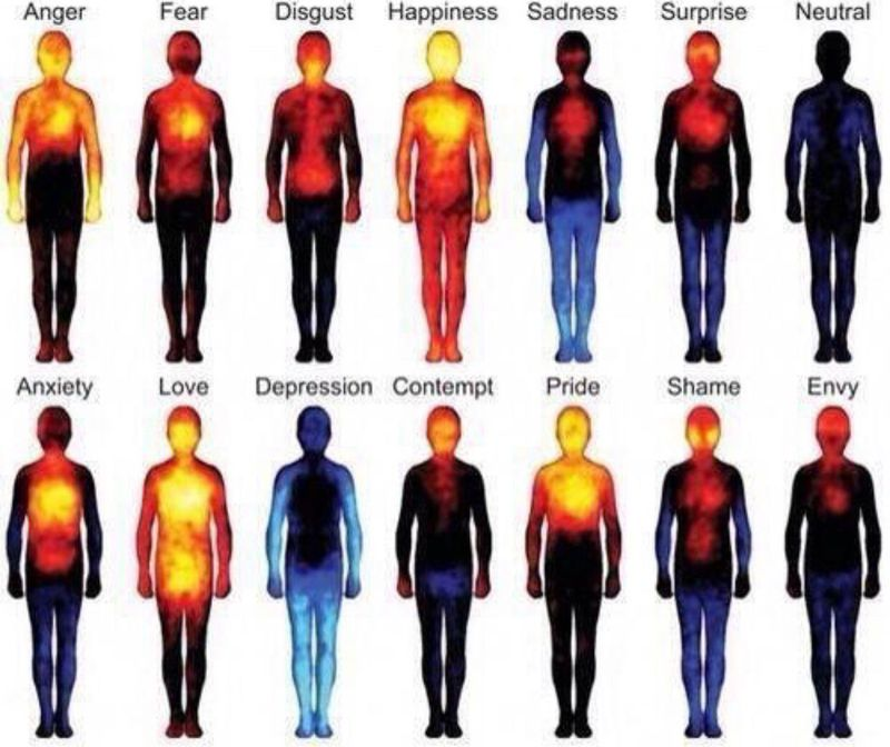 Heat maps reveal where you feel emotions in your body!!