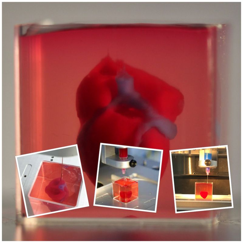 TAU scientists print first ever 3D heart using patient's own cells!!